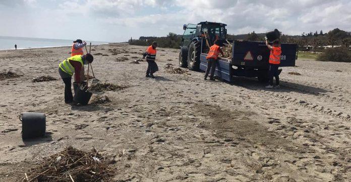 limpieza de playas
